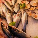 fish-shellfish-on-ice